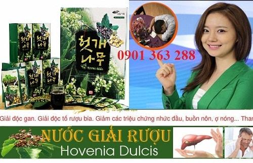 Nước giải rượu bổ gan Hovenia Dulcis Taewoong